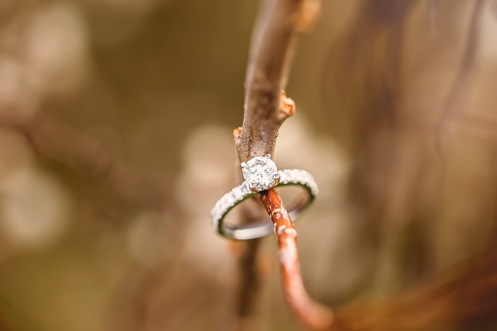 engagement ring Scarborough Bluffs Toronto Engagement Photographer