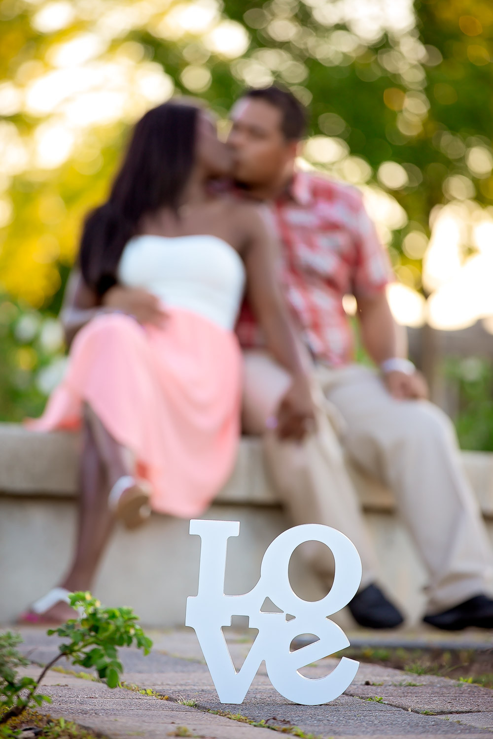 janielle-moises-richmond-green-engagement-14